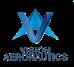 Vision Aeronauticsllc Logo